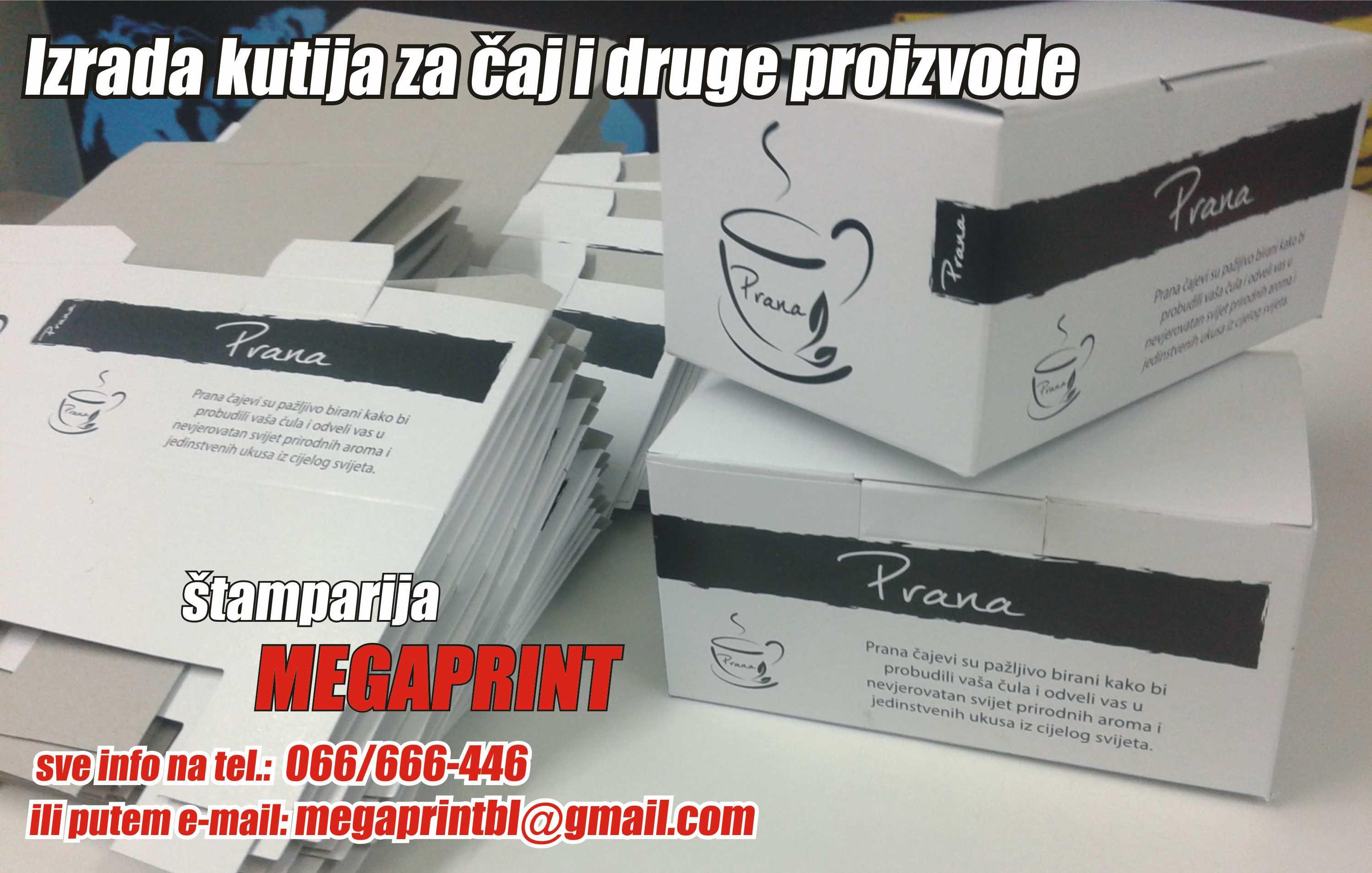 Megaprint4